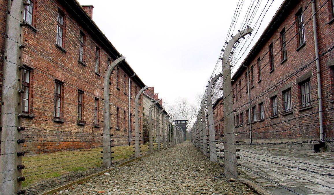 アウシュヴィッツ強制収容所の画像 p1_25