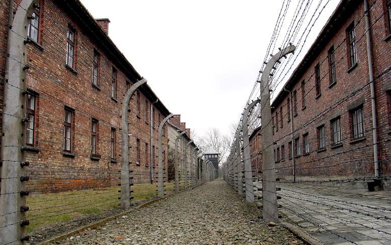 アウシュヴィッツ強制収容所の画像 p1_40